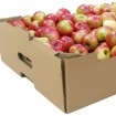 Ladite Carton Legume Si Fructe